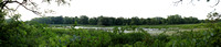 Vischer Ferry Panorama